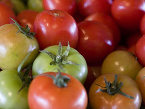 tomato-post