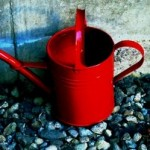 red-watering-can_blog