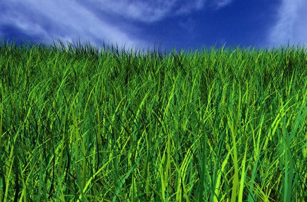 ... use. Is Synthetic grass the solution for lowering your water use and