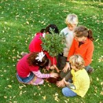 planting_blog