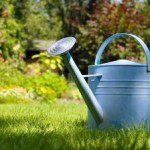 watering_can