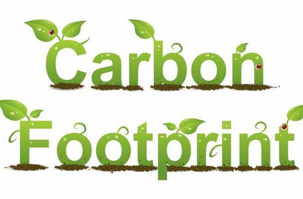 reducing carbon footprints essay