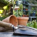 get-started-on-gardening
