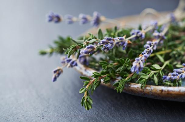 lavender_thyme