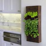 Kitchen-Vertical-Garden